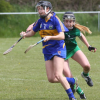 Tipperary Senior Camogie through to Munster Final
