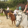 Summer Camps and Holiday Activities in Tipperary