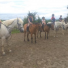 Halloween Fun and Pony Camp at Tipperary Mountain Trekking Centre Borrisoleigh